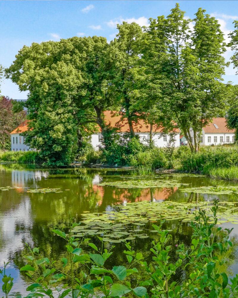 Lindvedgård